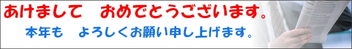 2010.1.1.jpg