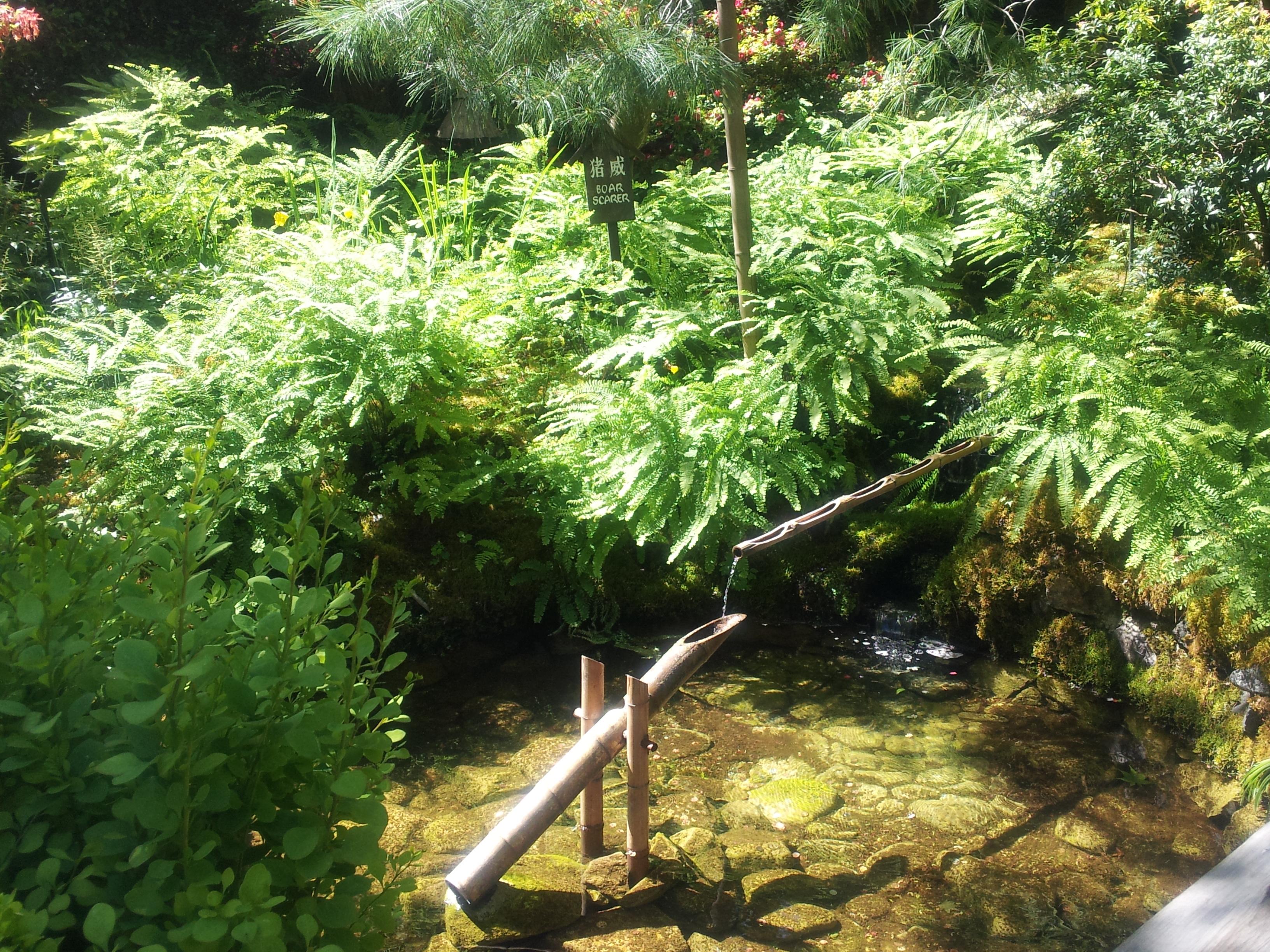 https://musashino-kaikei.com/press/user_upload/2012-06-11%2011.01.20.jpg